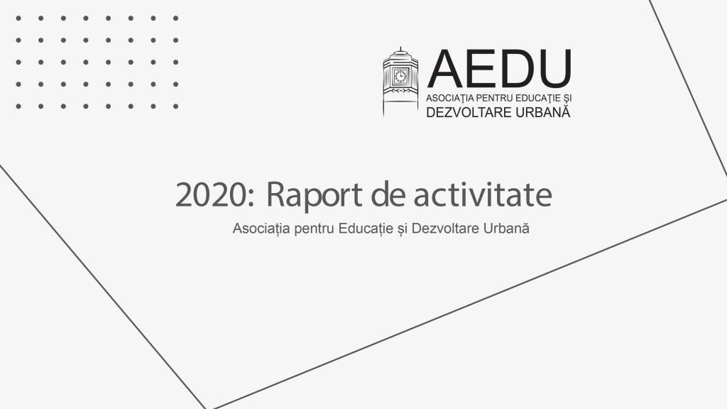 2020: Raport de activitate